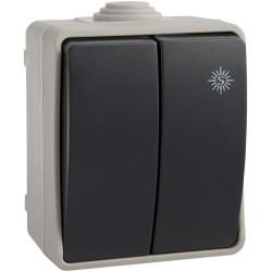 Interruptor Doble Conmutador Superficie Estanco