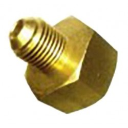 Acoplamiento Botella Gas-M M21 7X1/4SAE