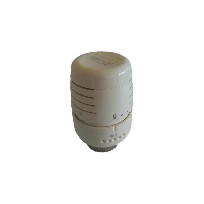 Cabezal Termostático Termat T5000